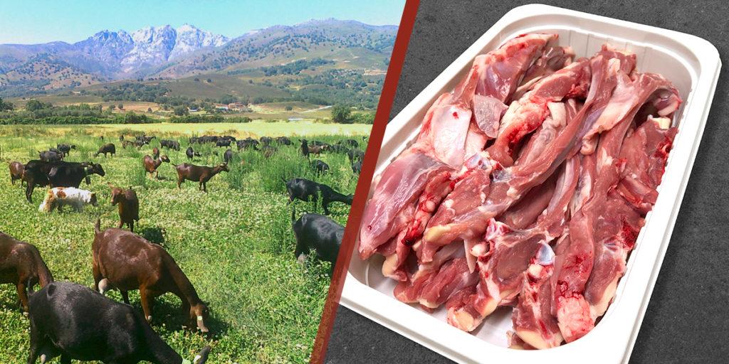 comprar carne cabrito lechal al por mayor canal horeca, comprar carne cabrito lechal ecologica, comprar carne cabrito lechal restaurantes, venta de carne cabrito lechal ecologica natural